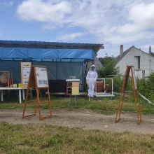 Beekeeping exhibition