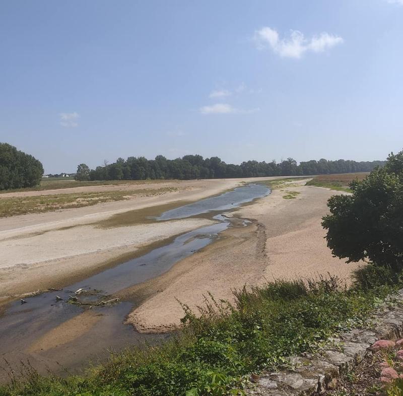 La Loire in summer mode
