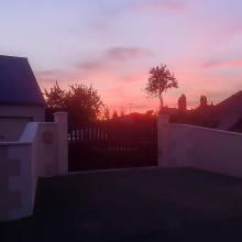 Rosy sunset